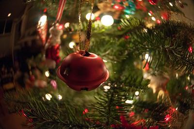 12-8-12 Christmas-0012