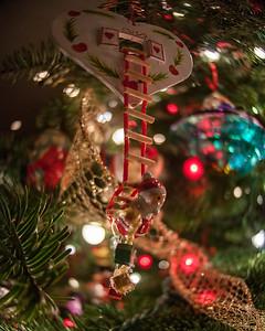 12-8-12 Christmas-0019