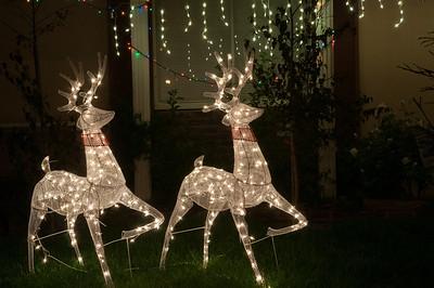 12-8-12 Christmas-0139