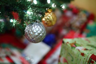Christmas 2013 at HoaPaul's