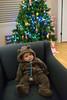 2014_December_24_christmas_eve_day_12