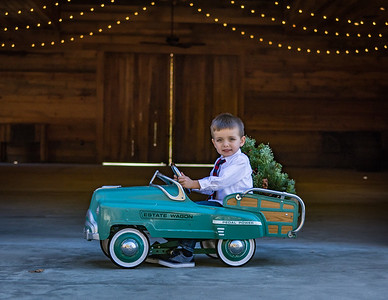 Christmas Barn Mini Sessions 2017