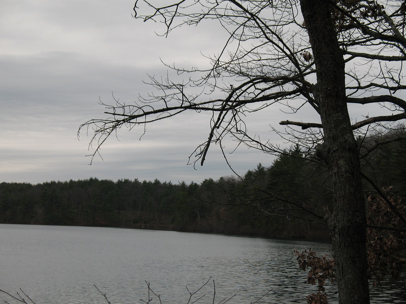 First stop: Walden Pond with Travis...in the rain (oops)