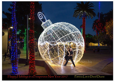 David Patricia bleed sRGB Lightr  xmas card 16 2764 DD names_bar