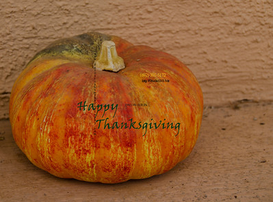 Gourd Happy Xgiving 1716
