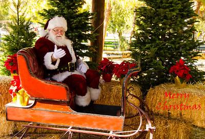 Santa in Sleigh 1755 MerryCh