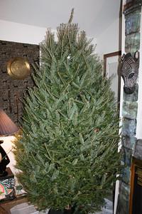 20081225 Family Christmas 008