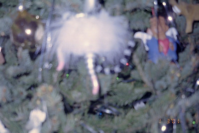 2001-1-3 Christmas Tree0004