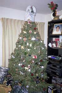 2001-1-3 Christmas Tree0006