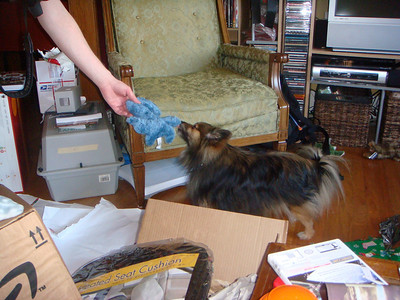 Tetley gets his present.
