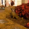 Channel Island Fox in Bronze