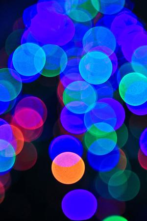 Christmas Scenes 2011