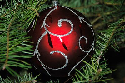 Christmas Scenes 2007