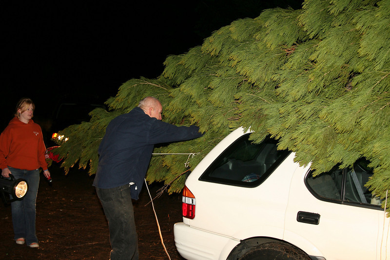 now we just need to tie down this 26 foot tree so it doesn't go anywhere on the hour long drive down winding mountain roads.