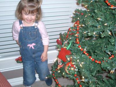 Christmas Tree - December 2005