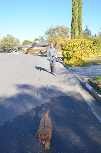 James walking Ruby on the mean streets of Saratoga.