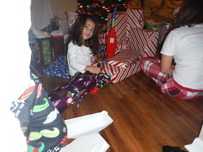 Christmas and New Years Eve 2015