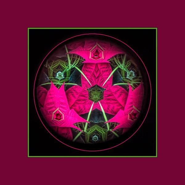 Kaleidoscope Eye - Poinsettias transformed (sc 2017-12-11)