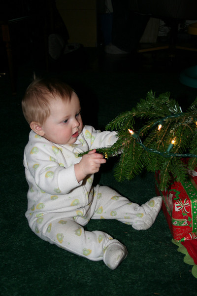 Violet was fascinated by the Christmas tree and the lights.