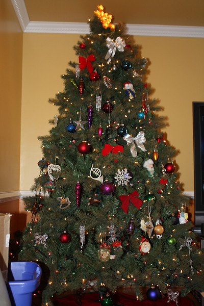 The Sinclair's Christmas Tree