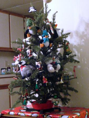 2010 02-08 Christmas Tree
