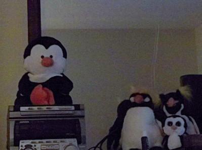 2010 12-18 to 12-20 Christmas decor