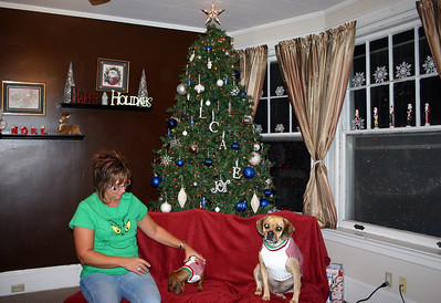 Lori, Charlie and Louie get ready for the Christmas picture ( 2010 )