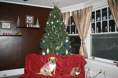 Merry Christmas from Louie and Charlie ( 2010 )