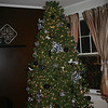 Our 2012 Christmas tree ( 2012 )