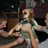 Alex and Todd putting Louie's new coat on that he got for Christmas.