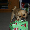 Louie opening his Christmas present