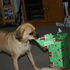Louie opening another present.