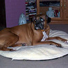 Justice on his bed