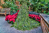 Holiday Greens Gown with red poinsettias
