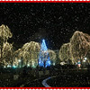 "Where are some ""cool"" places to see Holiday lights?<br /> <a href=""https://www.facebook.com/photo.php?fbid=10151977823932550&set=oa.264939826989525&type=1&theater"">https://www.facebook.com/photo.php?fbid=10151977823932550&set=oa.264939826989525&type=1&theater</a><br /> <br /> TWIN CITIES<br /> <br /> -St. Paul<br /> <br /> =>Phalen Neighborhood<br /> <a href=""https://www.facebook.com/HolidayLightsMN?ref=stream"">https://www.facebook.com/HolidayLightsMN?ref=stream</a><br /> <br /> =>Rice Park (Downtown)<br /> <a href=""https://www.facebook.com/WinterSkate"">https://www.facebook.com/WinterSkate</a><br /> <br /> SOUTH-WEST CENTRAL AREA<br /> <br /> -Mankato<br /> <a href=""https://www.facebook.com/pages/Kiwanis-Holiday-Lights/292411840839782"">https://www.facebook.com/pages/Kiwanis-Holiday-Lights/292411840839782</a><br /> <br /> <br /> WEST-CENTRAL AREA<br /> <br /> -Willmar<br /> <br /> <a href=""https://www.facebook.com/Celebratethelight"">https://www.facebook.com/Celebratethelight</a><br /> <br /> Christmas in the USA<br /> <a href=""https://www.facebook.com/photo.php?fbid=749402025074672&set=a.749400648408143.1073741887.443035202378024&type=1&theater"">https://www.facebook.com/photo.php?fbid=749402025074672&set=a.749400648408143.1073741887.443035202378024&type=1&theater</a><br /> <br /> <a href=""http://salphotobiz.smugmug.com/Holidays/Christmas/Christmas-in-the-United-States/27362555_xPSQgh#!i=2972115595&k=GHg5JRH&lb=1&s=A"">http://salphotobiz.smugmug.com/Holidays/Christmas/Christmas-in-the-United-States/27362555_xPSQgh#!i=2972115595&k=GHg5JRH&lb=1&s=A</a><br /> <br /> <br /> <br /> <br /> Original Pic.. <a href=""http://smu.gs/1bLD8qf"">http://smu.gs/1bLD8qf</a>"