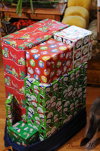 Michal's pile of presents. They cmae disguised in a big santa sack so it wasn't obvious how many presents there were at first.