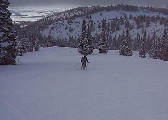 Jesse Skiing