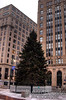 Christmas Tree in Monument Square.