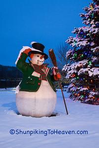Snowman and Christmas Tree, Sauk City, Wisconsin