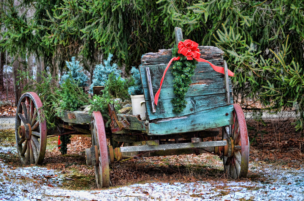 An old wagon filled with Christmas greenery and a red bow