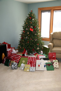 The Tree all decked out with presents. I guess we were good this year.