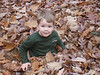 Luke playing in the leaves