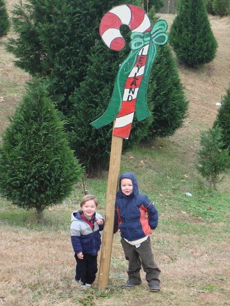 Reese & I joined the Barnett fam on their trip for the perfect family Christmas tree.