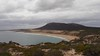 Coles Point