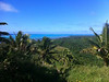View from the highest point at Aitutaki, 124 meters above sea level.