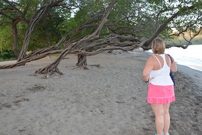 Walk along beach first morning - 5000+ steps