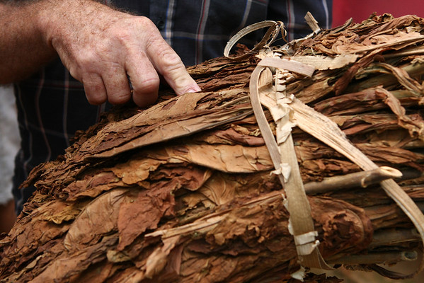 It all starts with some dried tobacco leaves.