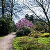 14 More of Muncaster Castle grounds