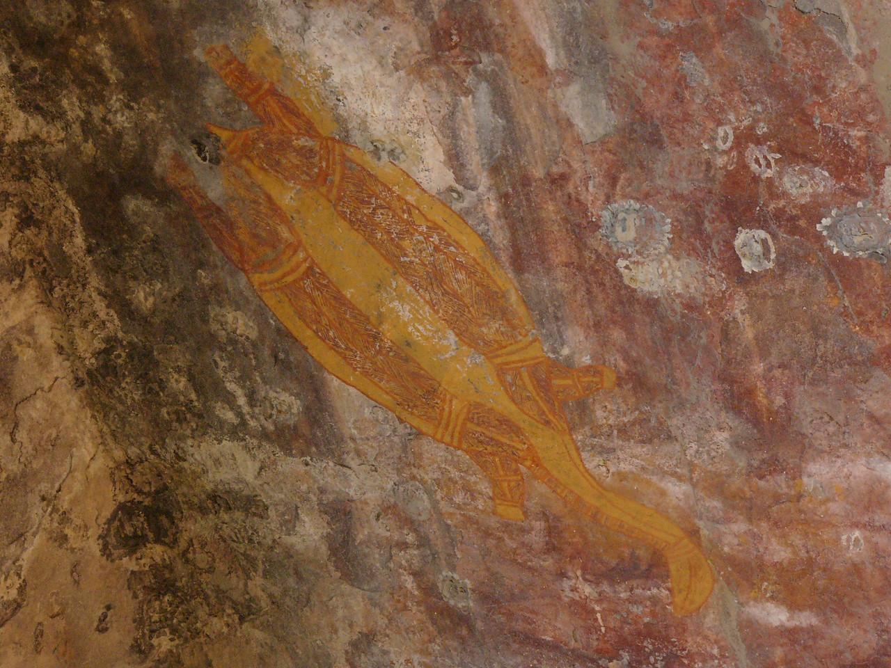 Aboriginal rock painting of a long-necked turtle at Ubirr, Kakadu National Park.