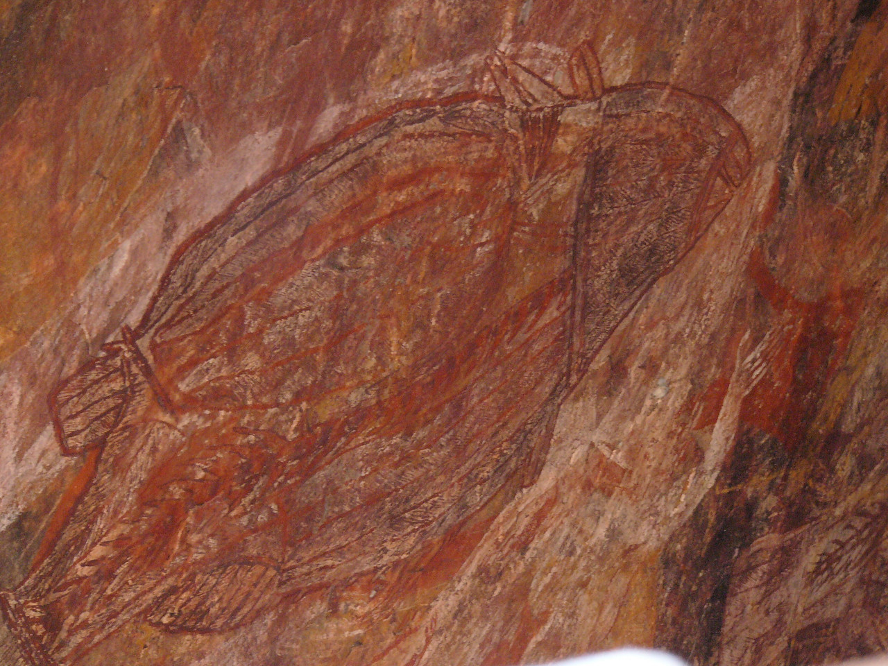 Aboriginal rock painting at Ubirr, Kakadu National Park. This is a picture of a fish done 'X-Ray' style.